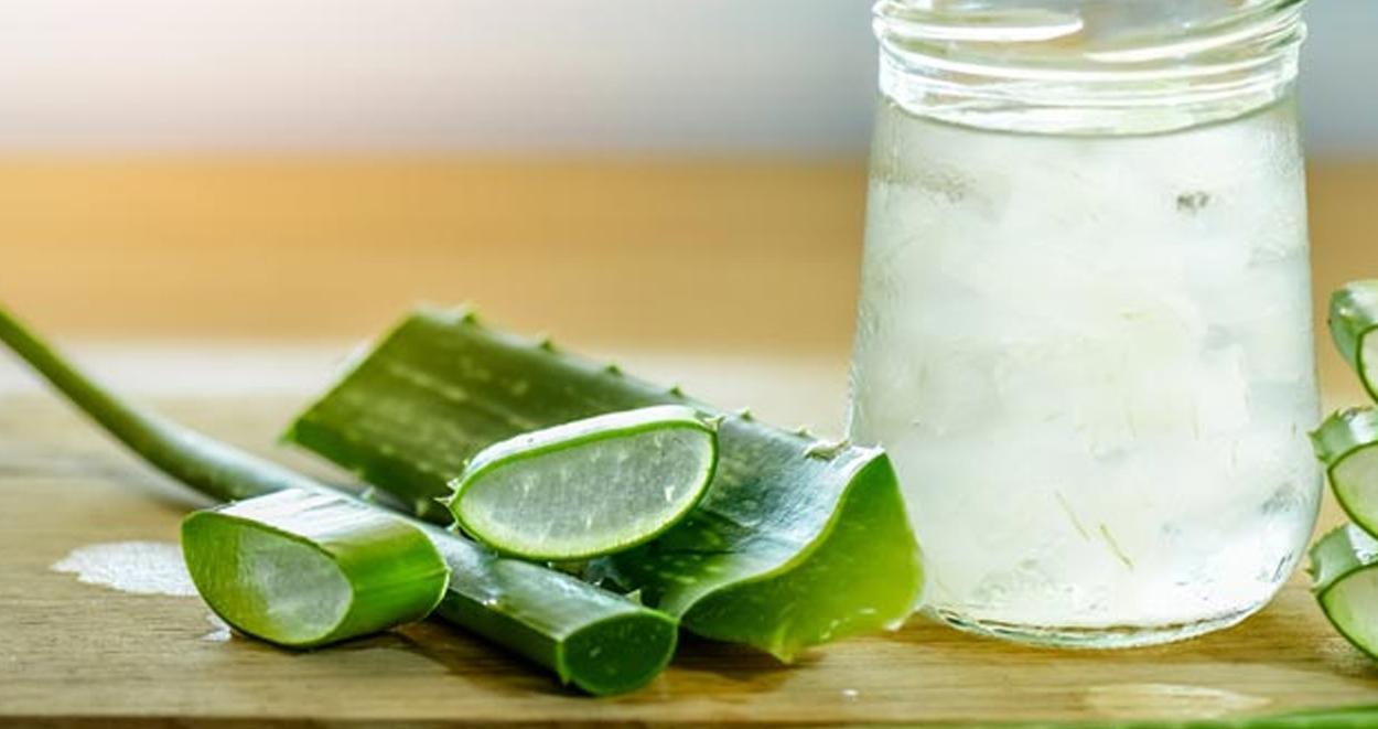 Aloe vera nedir ne icin kullanilir 1