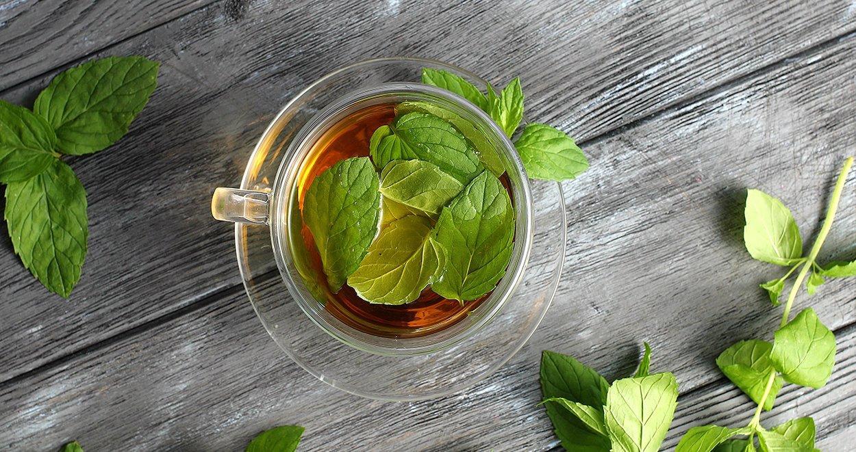 Ebegümeci Bitki Çayı ile Kilo Vermek Mümkün mü