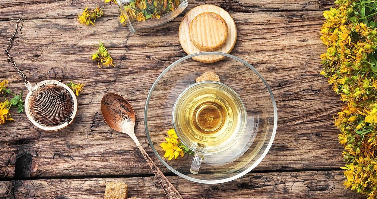 Tere Tohumlu Bitki Çayını Çok İçmenin Sakıncası Var Mı