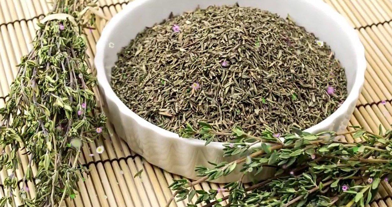 Mucize bitki kekigin faydalari nelerdir nerelerde kullanilir