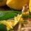 Limon Kabuğu Yağının 15 Faydası!